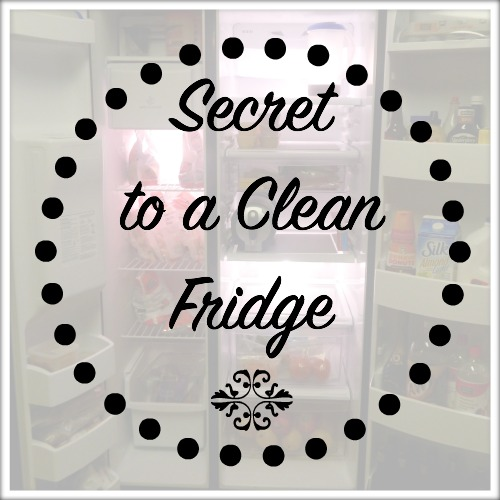 Secret to a Clean Fridge
